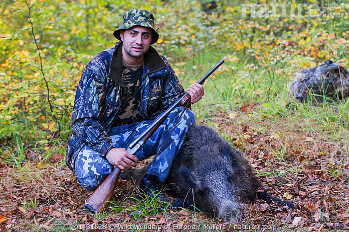 Young Romanian hunter posing with his first Wild boar (Sus scrofa) that he shot during a driving hunt in the forest area outside the village of Mehadia, Caras Severin, Romania, October 2012, CAMOUFLAGE,DECEASED,EASTERN EUROPE,GUNS,HORIZONTAL,PEOPLE,VERTEBRATES,ARTIODACTYLA,DEATH,EUROPE,FLORIAN MOELLERS,HUNTING,MAMMALS,MAN,PIGS,PORTRAITS,REWILDING,ROMANIA,SUIDAE,WWE, Wild Wonders of Europe / Möllers