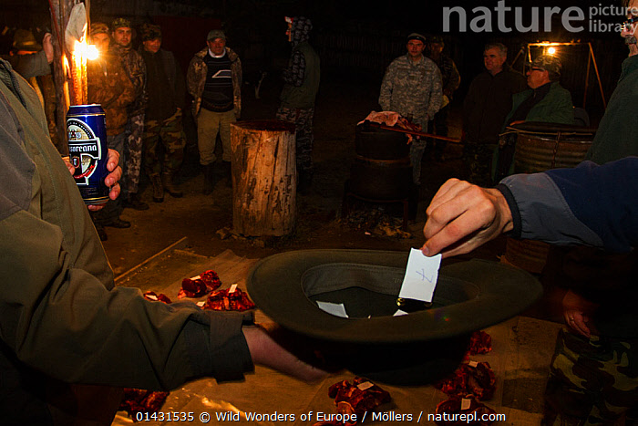 Romanian hunters participating in a lottery to share the freshly prepared meat of a female Wild boar (Sus scrofa) that was shot during a driving hunt. Mehadia, Caras Severin, Romania, October 2012, ARTIODACTYLA,BEER,BUTCHERY,DEATH,EUROPE,FLORIAN MOELLERS,HANDS,MAMMALS,PIGS,REWILDING,ROMANIA,SUIDAE,WWE,BUTCHERING,DECEASED,EASTERN EUROPE,HATS,HORIZONTAL,NIGHT,PEOPLE,VERTEBRATES, Wild Wonders of Europe / Möllers