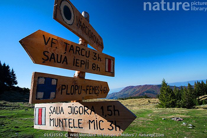 Wooden signposts for hiking trails in Tarcu Mountains Natura 2000 site at the Meteorological Station of Cuntu. Southern Carpathians, Muntii Tarcu, Caras-Severin, Romania, October 2012, EUROPE,FLORIAN MOELLERS,REWILDING,ROMANIA,SIGNS,WWE,EASTERN EUROPE,LANDSCAPES,MOUNTAINS, Wild Wonders of Europe / Möllers