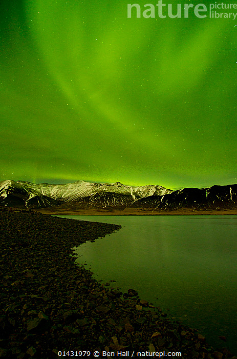 Aurora Borealis display over fjord at night, West Iceland, January 2013  ,  ARCTIC,COASTS,EUROPE,GREEN,ICELAND,LANDSCAPES,LIGHTS,NIGHT,NORTHERN LIGHTS,SKIES,SKY,VERTICAL  ,  Ben Hall