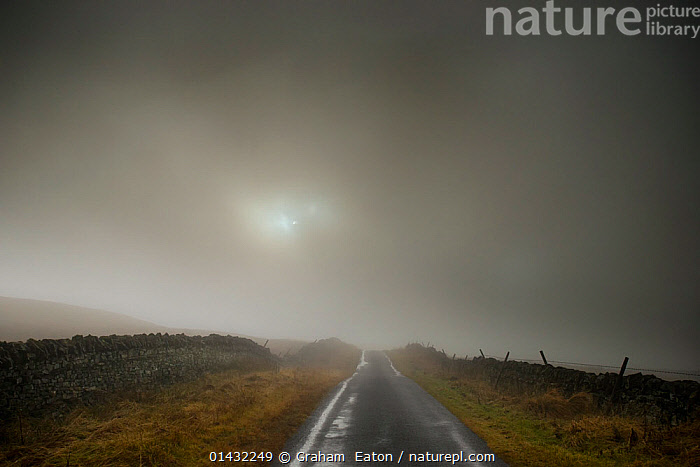 95f246af65 Nature Picture Library - A foggy scene on the road to the Tan Hill ...
