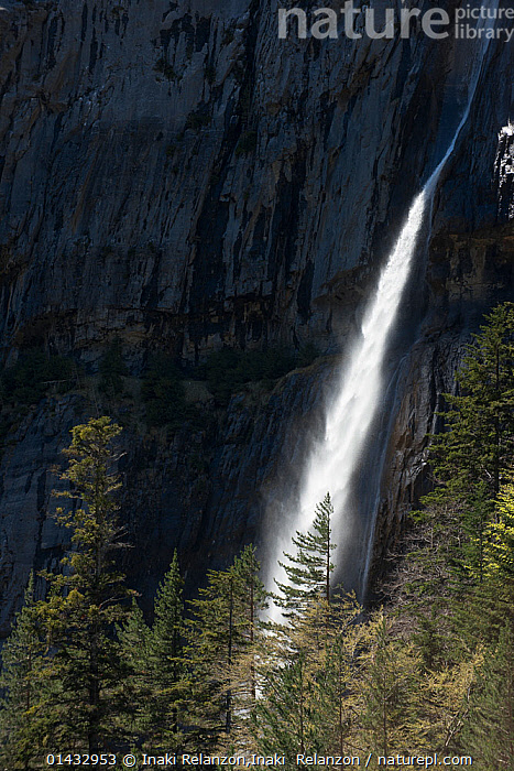 Bujaruelo Waterfall, Ordesa National Park, Huesca, Pyrenees, Spain, May 2013.  ,  CLIFFS,EUROPE,FRESHWATER,NP,RESERVE,SPAIN,STREAMS,TREES,VERTICAL,WATERFALLS,catalogue6,SPAIN,No One,Nobody,Europe,Southern Europe,South Europe,Iberian Peninsula,Spain,Cliff,Outdoors,Open Air,Outside,Day,Nature,Natural,Natural World,Power In Nature,Power,Powerful,Pyrenees,Abstract,Abstracts,Negative space,Bujaruelo Waterfall,Bujaruelo,Ordesa National Park,Huesca,Geology,National Park,Concepts,PLANTS  ,  Inaki Relanzon,Inaki  Relanzon