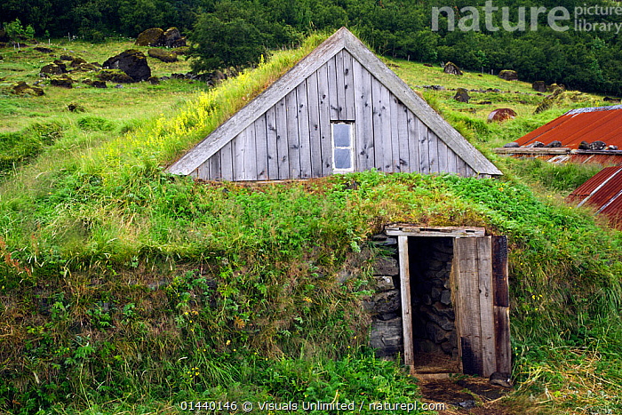 Rural farm with grass on the roof of buildings, Iceland  ,  AGRICULTURE,BUILDINGS,EUROPE,FARMS,ICELAND,LANDSCAPES,RURAL,TRADITIONAL,UNDERGROUND  ,  Visuals Unlimited