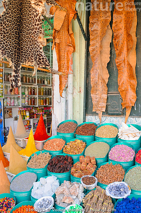 Animal skins, food and spices sold in Marrakesh Market, Morocco.  ,  AFRICA,CITIES,CULTURES,FOOD,MARKETS,NORTH AFRICA,SKINS,SPICES,STALLS,TRADITIONAL,VERTICAL  ,  Visuals Unlimited