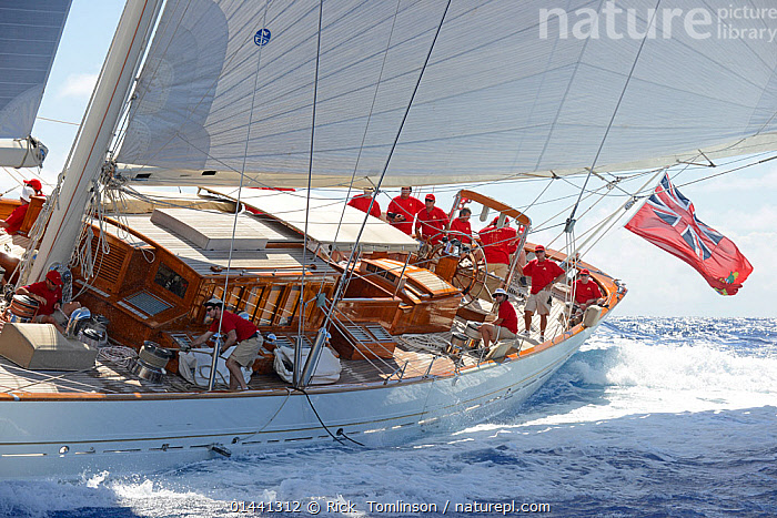 'Adela' the overall winner of the Antigua Superyacht Challenge 2013. All non-editorial uses must be cleared individually., ANTIGUA,BOATS,CARIBBEAN,CREWS,FLAGS,HEELING,MS,PROFILE,RACES,SAILING BOATS,SUPERYACHTS,UNIFORMS,WINNER,YACHTS,BLUEGREEN,THE CARIBBEAN,CLOTHING, Rick  Tomlinson