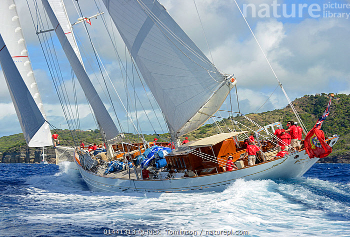 'Adela' the overall winner of the Antigua Superyacht Challenge 2013. All non-editorial uses must be cleared individually., ACTION,ANTIGUA,BOATS,CARIBBEAN,CREWS,HEELING,MANOEUVRES,MS,PEOPLE,RACES,RACING,SAILING BOATS,SUPERYACHTS,TACKING,UNIFORMS,YACHTS,BLUEGREEN,THE CARIBBEAN,CLOTHING, Rick  Tomlinson