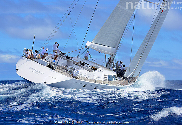 'Unfurled' competing in Antigua Superyacht Challenge 2013, heeling in choppy waters. All non-editorial uses must be cleared individually., ANTIGUA,BOATS,CARIBBEAN,CHOPPY,HEELING,MS,RACES,REAR VIEWS,SAILING BOATS,SUPERYACHTS,YACHTS,BLUEGREEN,THE CARIBBEAN, Rick  Tomlinson
