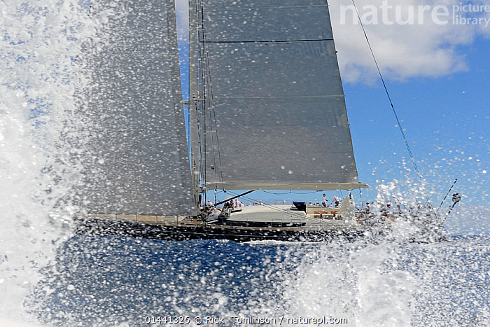 'P2' competing in the Antigua Superyacht Challenge 2013. All non-editorial uses must be cleared individually., ANTIGUA,BOATS,CARIBBEAN,RACES,SAILING BOATS,SUPERYACHTS,YACHTS,BLUEGREEN,THE CARIBBEAN,BOAT,BOATS,SAIL,BOAT PARTS,BOAT PART, Rick  Tomlinson