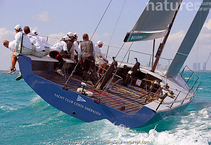 Day 2 of the Gaastra TP52 World Championships, TP52 'Azzurra', 2 races sailed. Miami, March 6th 2013. All non-editorial uses must be cleared individually., BOATS,RACES,SAILING BOATS,BLUEGREEN,PEOPLE,CREW,NORTH AMERICA,USA,SOUTHERN USA,SOUTHEAST US,FLORIDA,MIAMI,REAR VIEW,BACK,FROM BEHIND,WAKES,PROCEDURES,HIKING OUT, Rick  Tomlinson