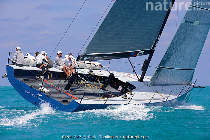 Day 5, final day, of the Gaastra TP52 World Championships, TP52 'Azzurra', 3 races sailed. RAN wins overall. Miami, March 9th 2013. All non-editorial uses must be cleared individually., BOATS,RACES,SAILING BOATS,BLUEGREEN,PEOPLE,CREW,NORTH AMERICA,USA,SOUTHERN USA,SOUTHEAST US,FLORIDA,MIAMI,REAR VIEW,BACK,FROM BEHIND,WAKES,PROCEDURES, Rick  Tomlinson