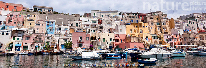 View of Procida, the small harbour of Corricella, island near Ischia Island, Italy, Tyrrhenian Sea, Mediterranean, catalogue6,Community,Communities,Moored,Docked,Mooring,Moorings,Colour,Colourful,Colorful,No One,Nobody,Europe,Southern Europe,South Europe,Italy,Panoramic,Man Made,Settlement,District,Harbour,Building,Residential Structure,House,Houses,Land Vehicle,Boat,Boats,Coastlines,Mediterranean Sea,Tyrrhenian Sea,Landscape,Landscapes,Outdoors,Open Air,Outside,Day,Travel,Place Of Interest,Travel Destinations,Coast,Marine,Coastal,Saltwater,Mixed boats,Mixed boats,Sea,Mediterranean Basin,Mediterranean,Biodiveristy hotspot,Biodiversity hotspots,View to land,Procida,Corricella, Franco  Banfi