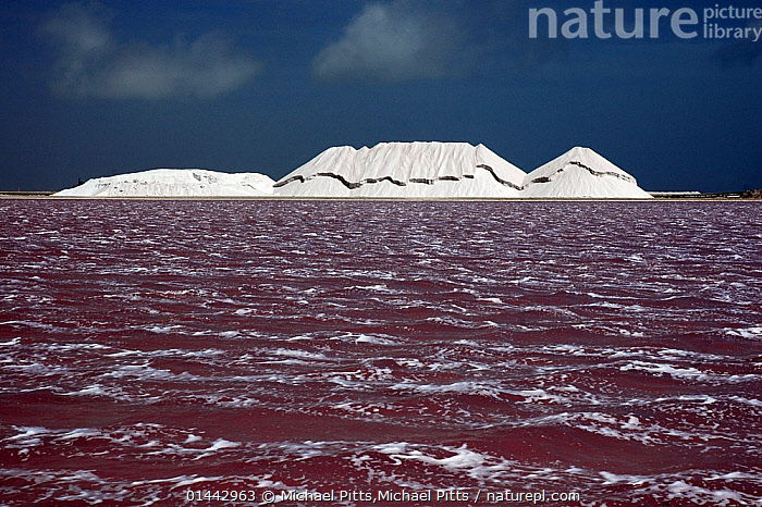 Salt pan lake and salt deposits. Bonaire. April 2005  ,  catalogue6,Bizarre,Disorder,Disruption,Disturbance,Mood,Ominous,Foreboding,Colour,Red,White,No One,Nobody,Americas,The Caribbean,Horizontal,Mountain,Salt Pans,Sulfate Plains,Sulphate Plain,Sulphate Plains,Sky,Wave,Landscape,Landscapes,Outdoors,Open Air,Outside,Day,Water Surface,Geology,Biodiversity hotspots,View to land,White colour  ,  Michael Pitts,Michael Pitts