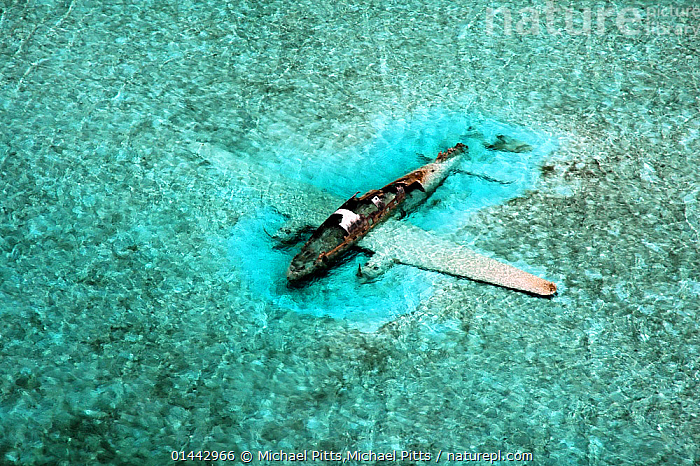 DC-3 Aircraft wreck. Drug running aircraft that crashed in shallow water. Normans Cay, Exhumas, Bahamas. May 2005  ,  catalogue6,Age,Old,Rusty,Rust,Rusted,Rusting,Colour,Blue,Turquoise,Aqua,Aqua Blue,Torquoise,Shallow,No One,Nobody,Wreck,Wreckage,Americas,The Caribbean,Horizontal,Aerial View,Birds Eye View,High Angle View,Man Made,Mode Of Transport,Aircraft,Ocean,Caribbean Sea,Outdoors,Open Air,Outside,Day,Marine,Saltwater,Sea,Biodiversity hotspots,Elevated view,Ageing Process,DC 3,Drug Running,Normans Cay,Exhumas,Forgotten  ,  Michael Pitts,Michael Pitts