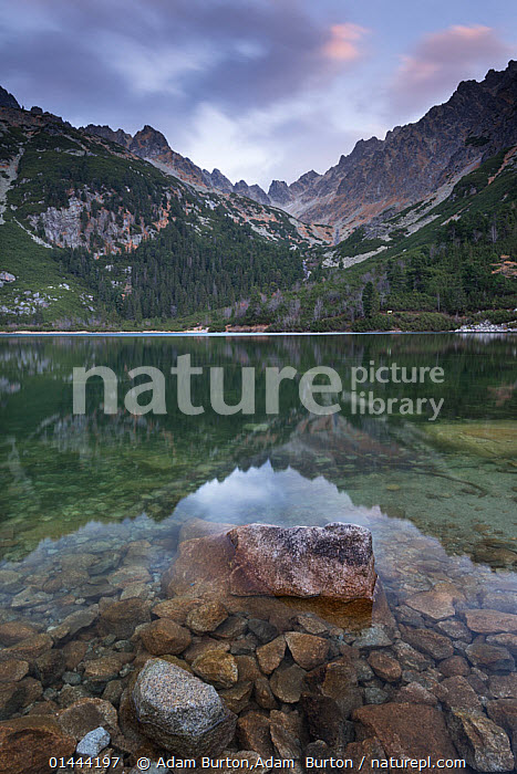 Popradske Pleso lake on a calm day, in the High Tatras, Slovakia, Europe. October 2012.  ,  catalogue6,Mood,Calm,No One,Nobody,Europe,Eastern Europe,East Europe,Slovakia,Vertical,Mountain,Light,Lights,Light Effect,Reflection,Outdoors,Open Air,Outside,Day,Freshwater,Lake,View to land,Popradske Pleso,High Tatras  ,  Adam Burton,Adam  Burton