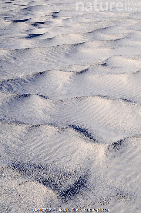 Irregular ripples on gypsum sand dunes created by high winds, White Sands National Park, Chihuahuan Desert, New Mexico, USA, December 2012.  ,  PATTERN,PATTERNED,PATTERNS,SHAPE,RIPPLE,RIPPLED,RIPPLES,AMERICAS,NORTH AMERICA,USA,UNITED STATES OF AMERICA,US STATES,WESTERN USA,SOUTHWEST US,NEW MEXICO,VERTICAL,SAND DUNE,DESERT,LANDSCAPE,LANDSCAPES  ,  Jouan Rius