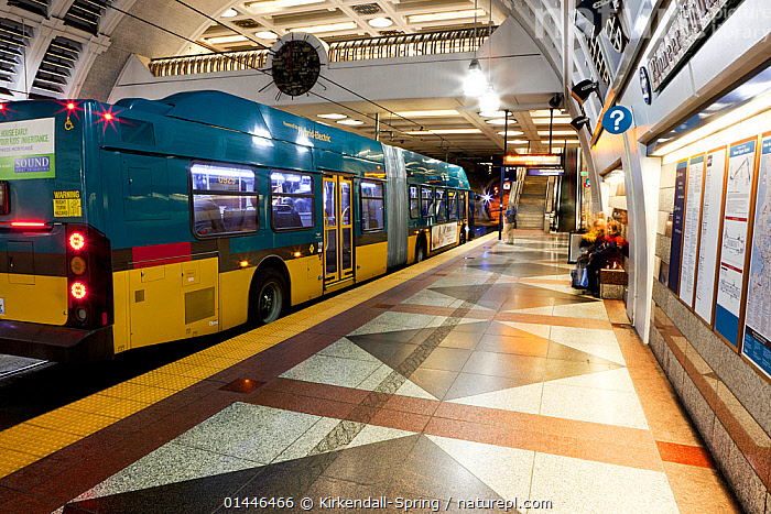 Pioneer Square Station for bus and Sound Transit trains in Seattle, Washington, USA. February 2013.  ,  Americas,North America,USA,United States Of America,US States,American States,Western USA,Washington,Seattle,Buildings,Terminal,Terminals,Transportation Building,Stations,Bus Stations,Mode Of Transport,Vehicle,Vehicles,Land Vehicle,Land Vehicles,Motor Vehicle,Automotive,Motorized Land Vehicles,Bus,Buses,Transportation,Transport,Transporting,Transit,Transmission,Transmit,Public Transportation,Public Transport  ,  Kirkendall-Spring