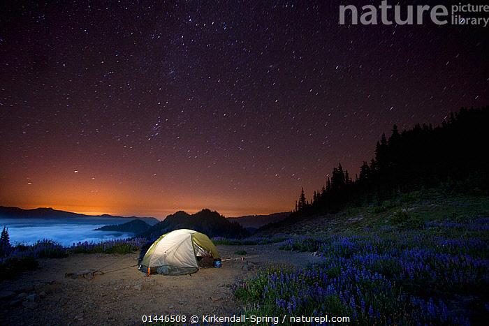 Camp site at night above Appleton Pass in Olympic National Park, Washington, USA, August 2013.  ,  catalogue6,Romance,Romantic,Sayings,Getting Away From It All,Away From It All,No One,Nobody,Americas,North America,USA,Western USA,Washington,Tent,Stars,Sky,Landscape,Landscapes,Outdoors,Open Air,Outside,Night,Nocturnal,Travel,Vacations,Honeymoon,Honeymoons,Reserve,Protected area,National Park,Olympic National Park,Lit Up,Camp Site,Appleton Pass  ,  Kirkendall-Spring