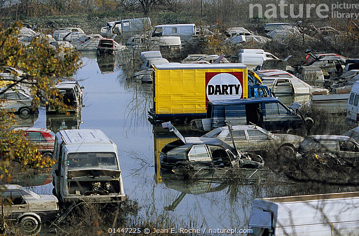 Flooded cars in scrapyard in Arles city flooded by the Rhone in December 2003. Camargue, France.  ,  catalogue6,Obsolescence,Junk,Obsolete,Abandoned,Colour,Yellow,Group,Large Group,Many,No One,Nobody,Europe,Western Europe,France,Bouches Du Rhone,Bouches Du Rhne,Bouches Du Rhone,Rhone,Animal,Junkyard,Mode Of Transport,Land Vehicle,Motor Vehicle,Car,Cars,Truck,Lorries,Lorry,Trucks,Van,Vans,Natural Disaster,Aftermath,Natural Disasters,Flood,Weather,Outdoors,Open Air,Outside,Day,Environment,Environmental Issues,Environmental Damage,Bad Weather,Severe weather,Large Group of Objects,Capital Letter,Arles,Wasteful,High Water,Camargue  ,  Jean E. Roche