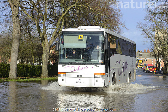 Shuttle bus driving through flood waters during Worcester's record floods, New Road, Worcester, England, UK, 13th February 2014.  ,  EUROPE,WESTERN EUROPE,WEST EUROPE,UK,BRITAIN,GREAT BRITAIN,UNITED KINGDOM,ENGLAND,WORCESTERSHIRE,WORCESTER,SETTLEMENT,SETTLEMENTS,TOWNS,MODE OF TRANSPORT,VEHICLE,VEHICLES,LAND VEHICLE,LAND VEHICLES,MOTOR VEHICLE,AUTOMOTIVE,MOTORIZED LAND VEHICLES,BUS,BUSES,FLOODED,FLOODING,FLOODS,FLOODWATER,FLOODWATERS,WEATHER,LANDSCAPE,LANDSCAPES,SCENIC,ENVIRONMENT,ENVIRONMENTAL ISSUES,ENVIRONMENTAL ISSUE,ENVIRONMENT ISSUE,ENVIRONMENTAL,GLOBAL WARMING,GLOBAL AFFECT,GREENHOUSE EFFECT,CLIMATE CHANGE  ,  Will Watson