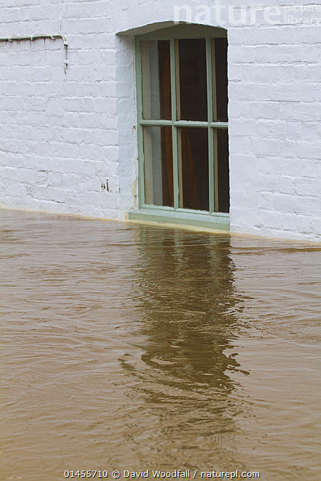 Water levels almost up to window of house during the February 2014 flooding, Upton upon Severn, Worcestershire, England, UK, February., EUROPE,WESTERN EUROPE,WEST EUROPE,UK,BRITAIN,GREAT BRITAIN,UNITED KINGDOM,ENGLAND,WORCESTERSHIRE,BUILDINGS,HOUSES,WINDOW PANE,WINDOW PANES,WINDOWS,FLOODED,FLOODING,FLOODS,FLOODWATER,FLOODWATERS,WATER,WEATHER,ENVIRONMENT,ENVIRONMENTAL ISSUES,ENVIRONMENTAL ISSUE,GLOBAL WARMING,GREENHOUSE EFFECT,CLIMATE CHANGE, David  Woodfall