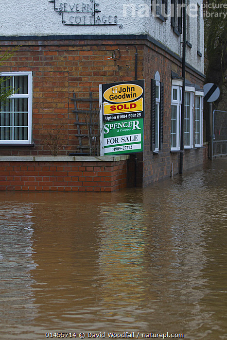 Flooded home which has recently been sold, during February 2014 flooding, Upton upon Severn, Worcestershire, England, UK, 9th February 2014., EUROPE,WESTERN EUROPE,WEST EUROPE,UK,BRITAIN,GREAT BRITAIN,UNITED KINGDOM,ENGLAND,WORCESTERSHIRE,INFORMATION,SIGNAGE,SIGNS,BUILDINGS,HOUSES,FLOODED,FLOODING,FLOODS,FLOODWATER,FLOODWATERS,WATER,WEATHER,ENVIRONMENT,ENVIRONMENTAL ISSUES,ENVIRONMENTAL ISSUE,GLOBAL WARMING,GREENHOUSE EFFECT,CLIMATE CHANGE, David  Woodfall