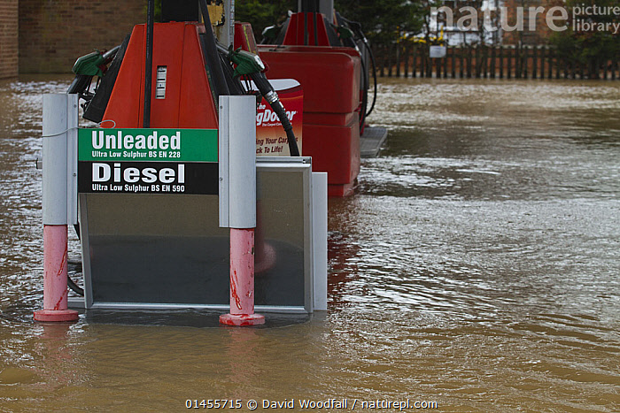 Flooded petrol station near the River Severn, during February 2014 floods, Upton upon Severn, Worcestershire, England, UK, 9th Februay 2014., EUROPE,WESTERN EUROPE,WEST EUROPE,UK,BRITAIN,GREAT BRITAIN,UNITED KINGDOM,ENGLAND,WORCESTERSHIRE,BUILDINGS,TERMINAL,TERMINALS,TRANSPORTATION BUILDING,GARAGE,GARAGES,GAS STATION,PETROL STATIONS,FLOODED,FLOODING,FLOODS,FLOODWATER,FLOODWATERS,WATER,WEATHER,ENVIRONMENT,ENVIRONMENTAL ISSUES,ENVIRONMENTAL ISSUE,GLOBAL WARMING,GREENHOUSE EFFECT,CLIMATE CHANGE, David  Woodfall