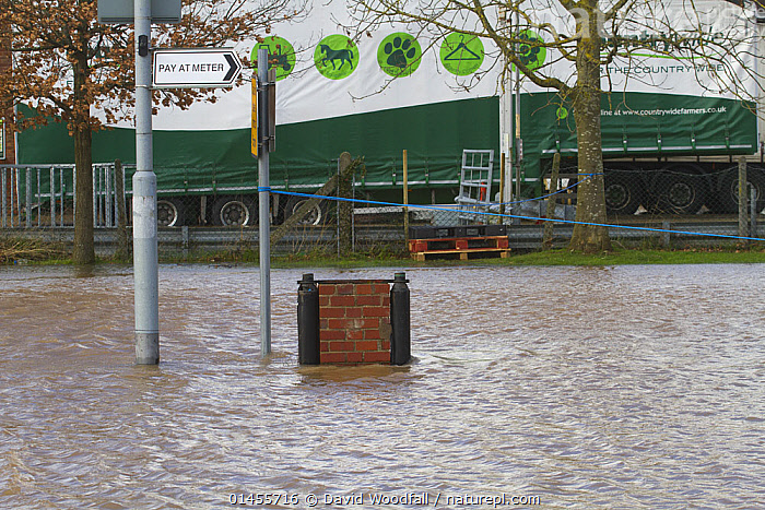 Flooded car park during the February 2014 flooding, Upton upon Severn, Worcestershire, England, UK, 9th February 2014., EUROPE,WESTERN EUROPE,WEST EUROPE,UK,BRITAIN,GREAT BRITAIN,UNITED KINGDOM,ENGLAND,WORCESTERSHIRE,PARKING LOT,CAR PARK,CAR PARKS,PARKING LOTS,FLOODED,FLOODING,FLOODS,FLOODWATER,FLOODWATERS,WATER,WEATHER,ENVIRONMENT,ENVIRONMENTAL ISSUES,ENVIRONMENTAL ISSUE,GLOBAL WARMING,GREENHOUSE EFFECT,CLIMATE CHANGE, David  Woodfall