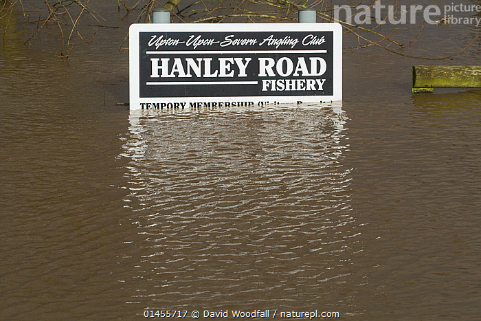 Sign for a fishing club, flooded during February 2014, Upton upon Severn, Worcestershire, England, UK, 9th February 2014.  ,  EUROPE,WESTERN EUROPE,WEST EUROPE,UK,BRITAIN,GREAT BRITAIN,UNITED KINGDOM,ENGLAND,WORCESTERSHIRE,INFORMATION,SIGNAGE,SIGNS,FLOODED,FLOODING,FLOODS,FLOODWATER,FLOODWATERS,WATER,WEATHER,ENVIRONMENT,ENVIRONMENTAL ISSUES,ENVIRONMENTAL ISSUE,GLOBAL WARMING,GREENHOUSE EFFECT,CLIMATE CHANGE  ,  David  Woodfall