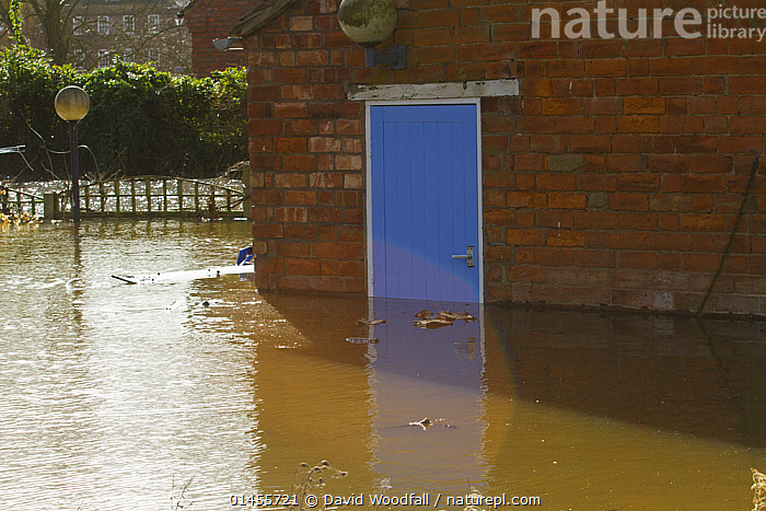 Flooding outside house with blue door during February 2014 floods, Upton upon Severn, Worcestershire, England, UK, 9th February 2014.  ,  COLOUR,BLUE,EUROPE,WESTERN EUROPE,WEST EUROPE,UK,BRITAIN,GREAT BRITAIN,UNITED KINGDOM,ENGLAND,WORCESTERSHIRE,BUILDINGS,HOUSES,ENTRANCES,DOORWAYS,DOORS,LIGHT,LIGHTS,LIGHT EFFECT,REFLECTION,MIRROR IMAGE,MIRROR IMAGES,REFLECT,REFLECTED,REFLECTING,REFLECTIONS,REFLECTIVE,FLOODED,FLOODING,FLOODS,FLOODWATER,FLOODWATERS,WATER,WEATHER,ENVIRONMENT,ENVIRONMENTAL ISSUES,ENVIRONMENTAL ISSUE,GLOBAL WARMING,GREENHOUSE EFFECT,CLIMATE CHANGE,COLOR  ,  David  Woodfall