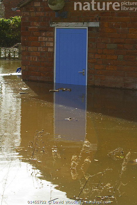 Flooding outside house with blue door during February 2014 floods, Upton upon Severn, Worcestershire, England, UK, 9th February 2014., COLOUR,BLUE,EUROPE,WESTERN EUROPE,WEST EUROPE,UK,BRITAIN,GREAT BRITAIN,UNITED KINGDOM,ENGLAND,WORCESTERSHIRE,BUILDINGS,HOUSES,ENTRANCES,DOORWAYS,DOORS,LIGHT,LIGHTS,LIGHT EFFECT,REFLECTION,MIRROR IMAGE,MIRROR IMAGES,REFLECT,REFLECTED,REFLECTING,REFLECTIONS,REFLECTIVE,FLOODED,FLOODING,FLOODS,FLOODWATER,FLOODWATERS,WATER,WEATHER,ENVIRONMENT,ENVIRONMENTAL ISSUES,ENVIRONMENTAL ISSUE,GLOBAL WARMING,GREENHOUSE EFFECT,CLIMATE CHANGE,COLOR, David  Woodfall