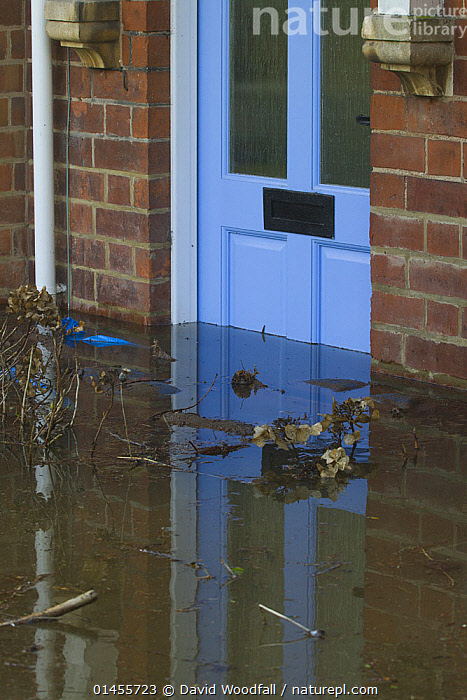 Flooding outside house with debris in front of door during February 2014 floods, Upton upon Severn, Worcestershire, England, UK, 9th February 2014., COLOUR,BLUE,EUROPE,WESTERN EUROPE,WEST EUROPE,UK,BRITAIN,GREAT BRITAIN,UNITED KINGDOM,ENGLAND,WORCESTERSHIRE,BUILDINGS,HOUSES,ENTRANCES,DOORWAYS,DOORS,LIGHT,LIGHTS,LIGHT EFFECT,REFLECTION,MIRROR IMAGE,MIRROR IMAGES,REFLECT,REFLECTED,REFLECTING,REFLECTIONS,REFLECTIVE,FLOODED,FLOODING,FLOODS,FLOODWATER,FLOODWATERS,WATER,WEATHER,ENVIRONMENT,ENVIRONMENTAL ISSUES,ENVIRONMENTAL ISSUE,GLOBAL WARMING,GREENHOUSE EFFECT,CLIMATE CHANGE,COLOR, David  Woodfall