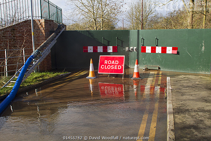 Flood barrier at the bottom of New Street, Upton upon Severn, during February 2014 flooding, Worcestershire, England, UK. 8th February 2014.  ,  EUROPE,WESTERN EUROPE,WEST EUROPE,UK,BRITAIN,GREAT BRITAIN,UNITED KINGDOM,ENGLAND,WORCESTERSHIRE,INFORMATION,SIGNAGE,SIGNS,FLOODED,FLOODING,FLOODS,FLOODWATER,FLOODWATERS,WATER,WEATHER,ENVIRONMENT,ENVIRONMENTAL ISSUES,ENVIRONMENTAL ISSUE,GLOBAL WARMING,GREENHOUSE EFFECT,CLIMATE CHANGE  ,  David  Woodfall