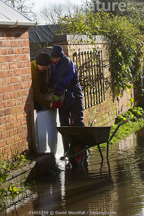 Couple installing sand bags to prevent flooding to their home during February 2014 floods, Upton Upon Severn, Worcestershire, England, UK, 8th February 2014.  ,  EUROPE,WESTERN EUROPE,WEST EUROPE,UK,BRITAIN,GREAT BRITAIN,UNITED KINGDOM,ENGLAND,WORCESTERSHIRE,BOUNDARY,BOUNDARIES,GATE,GATES,GATEWAY,GATEWAYS,BUILDINGS,WALLS,FLOODED,FLOODING,FLOODS,FLOODWATER,FLOODWATERS,WATER,WEATHER,ENVIRONMENT,ENVIRONMENTAL ISSUES,ENVIRONMENTAL ISSUE,GLOBAL WARMING,GREENHOUSE EFFECT,CLIMATE CHANGE  ,  David  Woodfall
