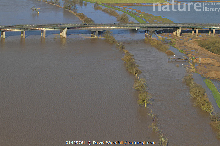 M50 motorway bridge, with River Severn and surrounding flood plain during February 2014 floods, near Upton Upon Severn Worcestershire, England, UK, 7th February 2014.  ,  EUROPE,WESTERN EUROPE,WEST EUROPE,UK,BRITAIN,GREAT BRITAIN,UNITED KINGDOM,ENGLAND,WORCESTERSHIRE,AERIAL VIEW,AERIAL SHOTS,AERIALS,BIRDS EYE VIEW,THOROUGHFARE,ROUTE,ROUTES,ROAD,ROADS,ROADWAY,ROADWAYS,MAJOR ROAD,MAIN ROAD,HIGHWAY,EXPRESS HIGHWAY,EXPRESS HIGHWAYS,EXPRESSWAYS,FREEWAY,FREEWAYS,HIGHWAYS,INTERSTATE,INTERSTATES,MOTORWAY,MOTORWAYS,BRIDGES,BUILDINGS,FLOODED,FLOODING,FLOODS,FLOODWATER,FLOODWATERS,WATER,FLOWING WATER,RIVER,RIVERS,WEATHER,ENVIRONMENT,ENVIRONMENTAL ISSUES,ENVIRONMENTAL ISSUE,GLOBAL WARMING,GREENHOUSE EFFECT,FRESHWATER,CLIMATE CHANGE  ,  David  Woodfall