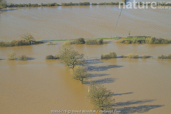 River Severn and flooded agricultural land during February 2014 floods, Gloucestershire, England, UK, 7th February 2014., EUROPE,WESTERN EUROPE,WEST EUROPE,UK,BRITAIN,GREAT BRITAIN,UNITED KINGDOM,ENGLAND,GLOUCESTERSHIRE,AERIAL VIEW,AERIAL SHOTS,AERIALS,BIRDS EYE VIEW,CULTIVATED LAND,FIELDS,FLOODED,FLOODING,FLOODS,FLOODWATER,FLOODWATERS,WATER,WEATHER,ENVIRONMENT,ENVIRONMENTAL ISSUES,ENVIRONMENTAL ISSUE,GLOBAL WARMING,GREENHOUSE EFFECT,FARMLAND,CLIMATE CHANGE, David  Woodfall