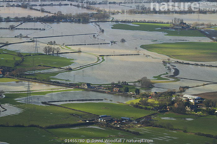 Aerial view of flooded agricultural land during February 2014 flooding, Gloucestershire, England, UK, July 2014., EUROPE,WESTERN EUROPE,WEST EUROPE,UK,BRITAIN,GREAT BRITAIN,UNITED KINGDOM,ENGLAND,GLOUCESTERSHIRE,AERIAL VIEW,AERIAL SHOTS,AERIALS,BIRDS EYE VIEW,CULTIVATED LAND,FIELDS,FLOODED,FLOODING,FLOODS,FLOODWATER,FLOODWATERS,WATER,WEATHER,ENVIRONMENT,ENVIRONMENTAL ISSUES,ENVIRONMENTAL ISSUE,GLOBAL WARMING,GREENHOUSE EFFECT,FARMLAND,CLIMATE CHANGE, David  Woodfall