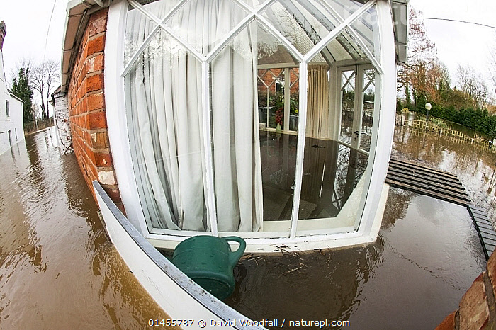 Fish eye view of conservatory of flooded house, showing water inside and outside, during the February 2014 floods, Upton upon Severn, Worcestershire, England, UK, 9th February 2014., EUROPE,WESTERN EUROPE,WEST EUROPE,UK,BRITAIN,GREAT BRITAIN,UNITED KINGDOM,ENGLAND,WORCESTERSHIRE,BUILDINGS,HOUSES,CONSERVATORIES,FLOODED,FLOODING,FLOODS,FLOODWATER,FLOODWATERS,WATER,WEATHER,ENVIRONMENT,ENVIRONMENTAL ISSUES,ENVIRONMENTAL ISSUE,GLOBAL WARMING,GREENHOUSE EFFECT,FISH EYE,FISH EYE,CLIMATE CHANGE, David  Woodfall
