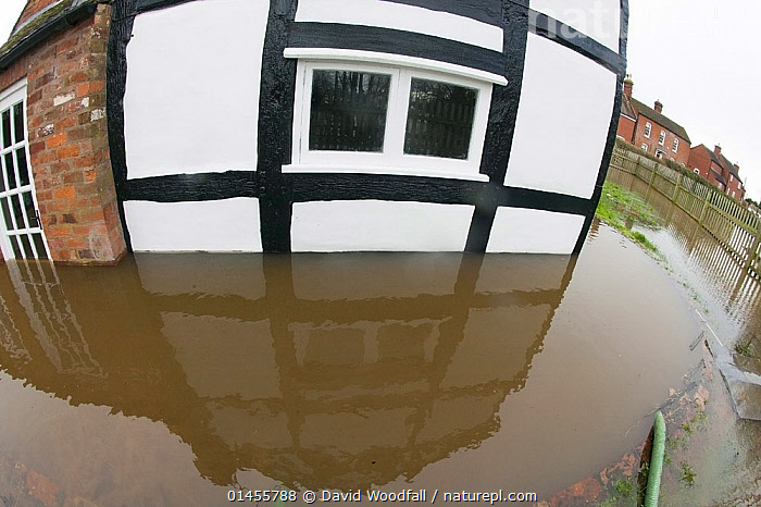 Fish eye view of flooded house during the February 2014 floods, Upton upon Severn, Worcestershire, England, UK, 9th February 2014., EUROPE,WESTERN EUROPE,WEST EUROPE,UK,BRITAIN,GREAT BRITAIN,UNITED KINGDOM,ENGLAND,WORCESTERSHIRE,BUILDINGS,HOUSES,LIGHT,LIGHTS,LIGHT EFFECT,REFLECTION,MIRROR IMAGE,MIRROR IMAGES,REFLECT,REFLECTED,REFLECTING,REFLECTIONS,REFLECTIVE,FLOODED,FLOODING,FLOODS,FLOODWATER,FLOODWATERS,WATER,WEATHER,ENVIRONMENT,ENVIRONMENTAL ISSUES,ENVIRONMENTAL ISSUE,GLOBAL WARMING,GREENHOUSE EFFECT,FISH EYE,FISH EYE,CLIMATE CHANGE, David  Woodfall
