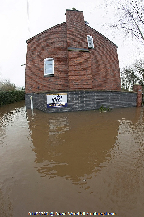 Fish eye view of flooded house during the February 2014 floods, Upton upon Severn, Worcestershire, England, UK, 9th February 2014., EUROPE,WESTERN EUROPE,WEST EUROPE,UK,BRITAIN,GREAT BRITAIN,UNITED KINGDOM,ENGLAND,WORCESTERSHIRE,BUILDINGS,HOUSES,FLOODED,FLOODING,FLOODS,FLOODWATER,FLOODWATERS,WATER,WEATHER,ENVIRONMENT,ENVIRONMENTAL ISSUES,ENVIRONMENTAL ISSUE,GLOBAL WARMING,GREENHOUSE EFFECT,FISH EYE,FISH EYE,CLIMATE CHANGE, David  Woodfall