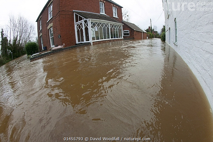 Fish eye view of flooded house during the February 2014 floods, Upton upon Severn, Worcestershire, England, UK, 9th February 2014.  ,  EUROPE,WESTERN EUROPE,WEST EUROPE,UK,BRITAIN,GREAT BRITAIN,UNITED KINGDOM,ENGLAND,WORCESTERSHIRE,BUILDINGS,HOUSES,FLOODED,FLOODING,FLOODS,FLOODWATER,FLOODWATERS,WATER,WEATHER,ENVIRONMENT,ENVIRONMENTAL ISSUES,ENVIRONMENTAL ISSUE,GLOBAL WARMING,GREENHOUSE EFFECT,FISH EYE,FISH EYE,CLIMATE CHANGE  ,  David  Woodfall