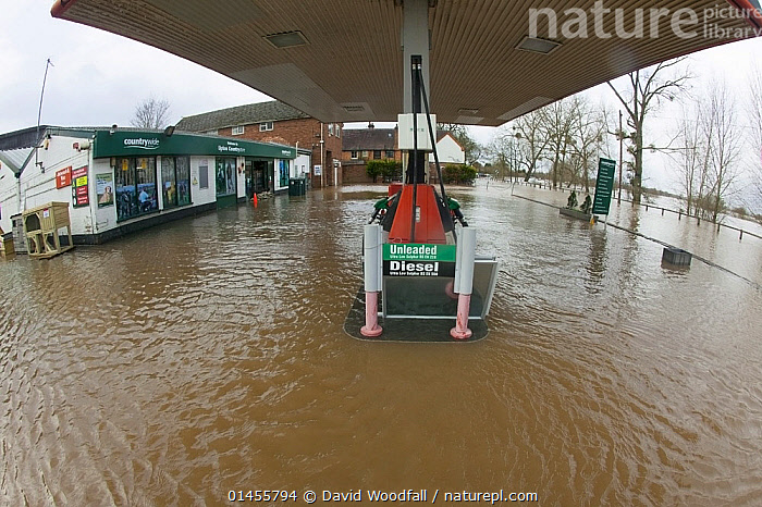 Petrol station flooded during the February 2014 floods, Upton upon Severn, Worcestershire, England, UK, 9th February 2014., EUROPE,WESTERN EUROPE,WEST EUROPE,UK,BRITAIN,GREAT BRITAIN,UNITED KINGDOM,ENGLAND,WORCESTERSHIRE,BUILDINGS,HOUSES,TERMINAL,TERMINALS,TRANSPORTATION BUILDING,GARAGE,GARAGES,GAS STATION,PETROL STATIONS,FLOODED,FLOODING,FLOODS,FLOODWATER,FLOODWATERS,WATER,WEATHER,ENVIRONMENT,ENVIRONMENTAL ISSUES,ENVIRONMENTAL ISSUE,GLOBAL WARMING,GREENHOUSE EFFECT,FISH EYE,FISH EYE,CLIMATE CHANGE, David  Woodfall