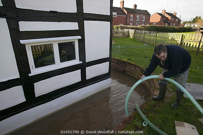Resident trying to pump out water from cottage during February 2014 flood, Upon upon Severn, Worcestershire, England, UK, 8th February 2014., PEOPLE,HUMAN,HUMANS,PERSON,PERSONS,MALES,MEN,BUILDINGS,HOUSES,FLOODED,FLOODING,FLOODS,FLOODWATER,FLOODWATERS,WATER,WEATHER,ENVIRONMENT,ENVIRONMENTAL ISSUES,ENVIRONMENTAL ISSUE,GLOBAL WARMING,GREENHOUSE EFFECT,CLIMATE CHANGE,Europe,United Kingdom, David  Woodfall