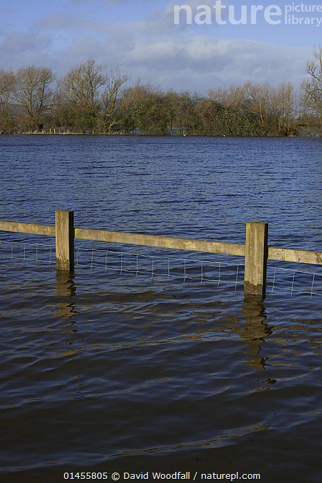 Flooded caravan site during February 2014 floods from River Severn, Upton upon Severn, Worcestershire, England, UK, 8th February 2014., EUROPE,WESTERN EUROPE,WEST EUROPE,UK,BRITAIN,GREAT BRITAIN,UNITED KINGDOM,ENGLAND,WORCESTERSHIRE,BOUNDARY,BOUNDARIES,FENCE,FENCES,PARTITION,PARTITIONS,WOODEN FENCE,WOODEN FENCES,FLOODED,FLOODING,FLOODS,FLOODWATER,FLOODWATERS,WATER,WEATHER,ENVIRONMENT,ENVIRONMENTAL ISSUES,ENVIRONMENTAL ISSUE,GLOBAL WARMING,GREENHOUSE EFFECT,CLIMATE CHANGE, David  Woodfall