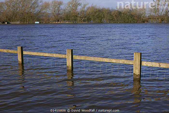 Flooded caravan site during February 2014 floods from River Severn, Upton upon Severn, Worcestershire, England, UK, 8th February 2014.  ,  BOUNDARY,BOUNDARIES,FENCE,FENCES,PARTITION,PARTITIONS,WOODEN FENCE,WOODEN FENCES,FLOODED,FLOODING,FLOODS,FLOODWATER,FLOODWATERS,WATER,WEATHER,ENVIRONMENT,ENVIRONMENTAL ISSUES,ENVIRONMENTAL ISSUE,GLOBAL WARMING,GREENHOUSE EFFECT,CLIMATE CHANGE,Europe,United Kingdom  ,  David  Woodfall