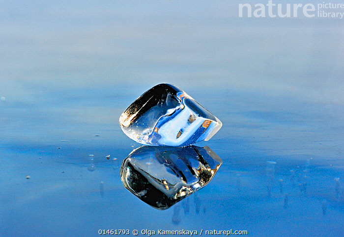 Ice fragment reflected in the ice of Lake Baikal, Siberia, Russia, March., catalogue6,Thawing,Frozen,No One,Nobody,Part Of,Fragment,Transparent,Temperature,Cold,Chill,Chilly,Russia,Siberia,Close Up,Reflection,Ice,Ice Cube,Iced,Ice Cubes,Outdoors,Open Air,Outside,Season,Seasons,Winter,Day,Freshwater,Lake,Lake Baikal,One Object, Olga Kamenskaya