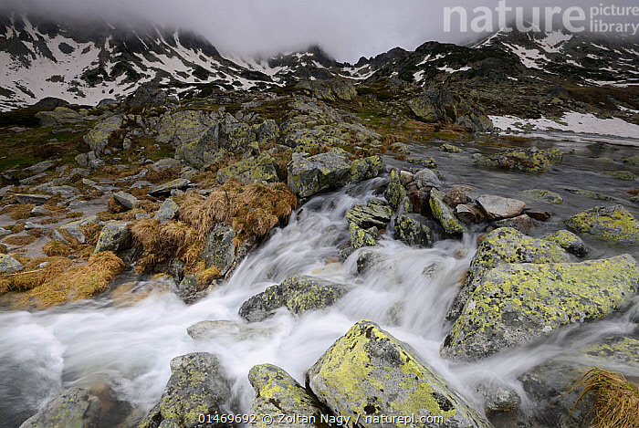 Overflow stream from Bucura lake in the Retezat National Park, Romania. May 2013.  ,  EUROPE,EASTERN EUROPE,EAST EUROPE,ROMANIA,HORIZONTAL,MOUNTAIN,ALPINE,FLOWING WATER,STREAM,STREAMS,FRESHWATER,WATER,PROTECTED AREA,NATIONAL PARK,NP,RESERVE  ,  Zoltan Nagy