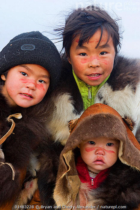 Chukchi girls, with their family's ancestral clan mark painted in reindeer blood on their face, a ritual during the Chukchi 'Festival of the Young Reindeer' during which young reindeer are sacrificed. Iultinsky District, Chukotka, Siberia, Russia., ACTIVITIES,AMGUEMA,ANIMISM,ARCTIC,ARTIC,BLOOD,CHILD,CHUKCHI,CHUKOTKA,COLLECTING,FESTIVAL OF THE YOUNG REINDEER,GIRL,INDIGENOUS PEOPLE,IULTINSKY DISTRICT,LIFE STAGES,MAMMAL,MAMMALS,MARK,NATIVE PEOPLES,PEOPLE,RANGIFER TARANDUS,REINDEER,REINDEER HERDER,REINDEER HERDERS CAMP,REINDEER HERDING,RELIGION,RELIGION AND BELIEFS,RELIGIOUS CEREMONY,RELIGIOUS FESTIVALS,RITUAL,RUSSIA,RUSSIAN,RUSSIAN FAR EAST,SIBERIA,SIBERIAN,SIGNS,SYMBOL,TRADITIONAL LIFESTYLES,PEOPLE,CHILD,GROUP,GROUP OF PEOPLE,SMALL GROUP OF PEOPLE,FEW,CELEBRATION EVENT,FESTIVAL,RUSSIA,SIBERIA,ARCTIC,POLAR,ARCTIC CIRCLE,PORTRAIT,OBJECT,CLOTHING,FUR COATS,FUR JACKET,FUR JACKETS,TRADITIONAL CLOTHING,RELIGION,CULTURE,INDIGENOUS CULTURE,RUSSIAN CULTURE,TRIBES,LOCAL PEOPLE,INDIGENOUS PEOPLE,HERDER,CHUKCHI,CHUKOTKA,CHUKCHI PEOPLE,RITUAL,REINDEER HERDER ,Vertical, ,Tribes,, Bryan and Cherry Alexander