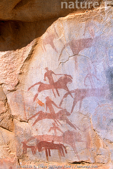 Rock painting showing warriors riding into battle on lions. Guilemsi, central Mauritania, 2004.  ,  ANCIENT,AFRICA,WEST AFRICA,MAURITANIA,ART,DESERT,DESERTS,ROCK,HISTORY,CULTURE,AFRICAN CULTURE,AFRICAN,ANIMALS IN ART,ANIMALS IN ART,ROCK ART,WEST AFRICAN,THE PAST,NATIVE AFRICAN CULTURE  ,  Steve O. Taylor (GHF)