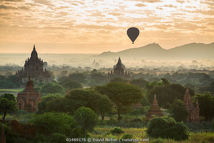 Hot air balloon over the Temples of Bagan at dawn, Myanmar, November 2012.  ,  catalogue7,Adventure,Adventures,Adventurous,Mood,Calm,Morning,Mornings,Ancient,Mid Air,Famous Place,Landmark,Nobody,Asia,South East Asia,Burma,Myanmar,High Angle View,Balloons,Building,Building Exterior,Pagoda,Pagodas,Temple,Temples,Ruins,Ruin,Aircraft,Hot Air Balloon,Hot Air Balloons,Boat,Boats,Horizon,Horizon Over Land,Horizons Over Land,Sunrise,Landscape,Landscapes,Outdoors,Open Air,Outside,Day,Architecture,Exploration,History,Religion,Eastern Religion,Eastern Religions,Buddhism,Travel,Open boat,Outrigger,Dawn,Elevated view,The Past,Bagan,Buddhist  ,  David Noton