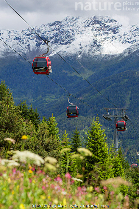 Cable cars at Fiss, Nordtirol, Austrian Alps, June 2014., high15,,,Accessibility,Access,Accessible,Approachable,Colour,Red,Above,Distant,Distance,Few,Three,Group,Nobody,Snowcapped,Europe,Western Europe,Austria,Vertical,Camera Focus,Plant,Wildflower,Wildflowers,Flower,Flowers,Tree,Overhead Cable Car,Cable Car,Cable Cars,Cableway,Cableways,Overhead Cable Cars,Hill,Hills,Hillside,Hillsides,Mountain,Alpine,Landscape,Landscapes,Outdoors,Open Air,Outside,Day,Woodland,Forest,Low depth of field,Three Objects,North Tyrol,Fiss,, Alex  Hyde